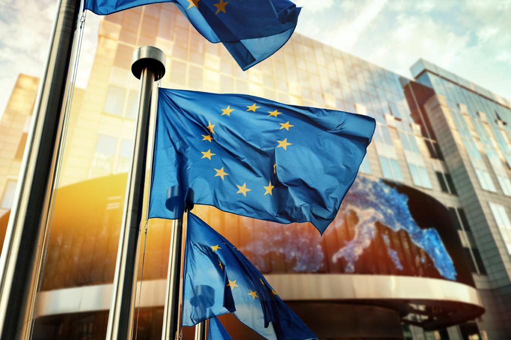 Parlamento Ue approva risoluzione si trasporto animali